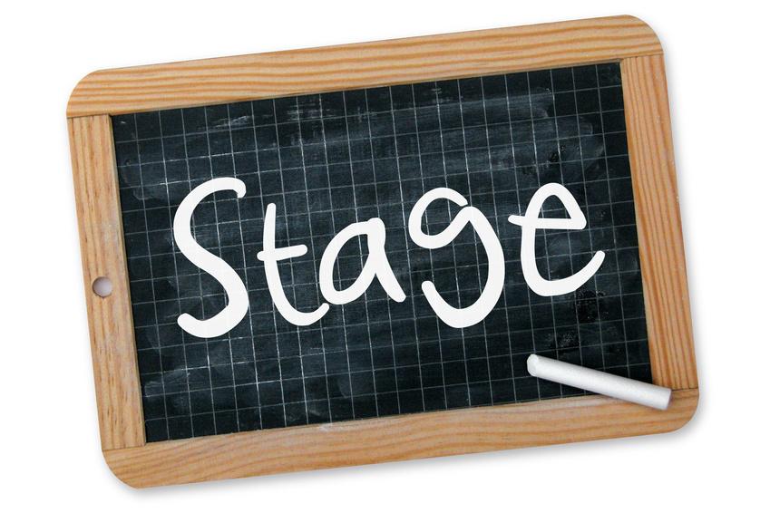 """Résultat de recherche d'images pour """"stage toussaint"""""""